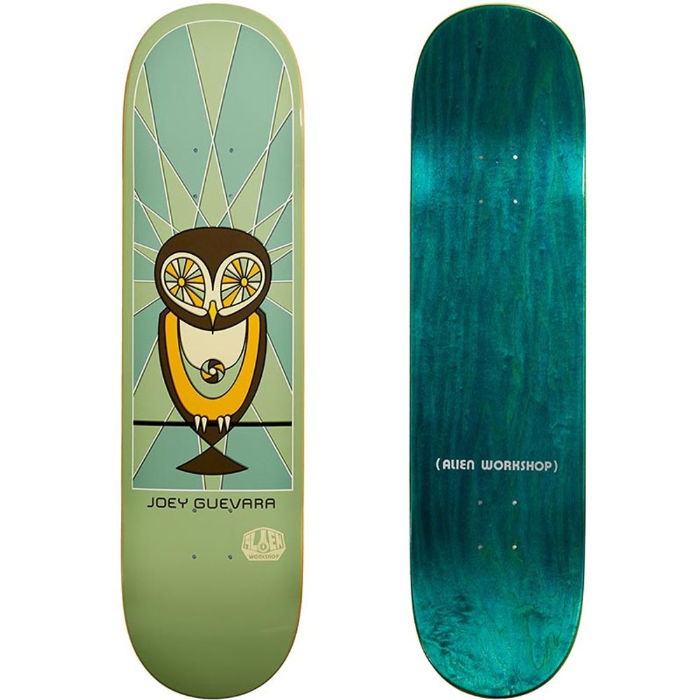 Shape-Alien-Workshop-Joey-Guevara-Owl-01