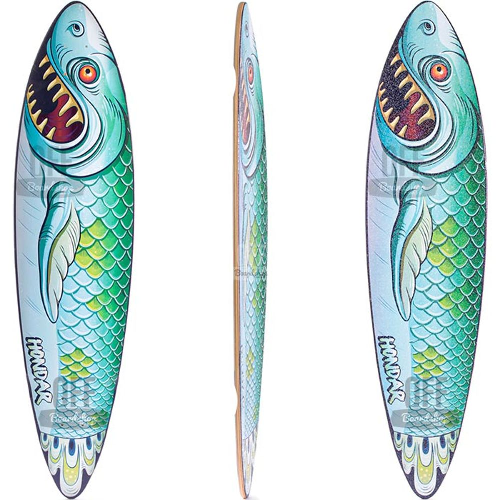 Shape-Hondar-Pintail-Fish-39-01.jpg