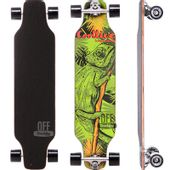 Longboard-Allyb-Cooltive-Chameleon-37